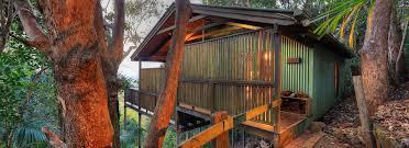 Treetops Accommodation Montville Deals U0026 Reviews Sunshine Coast Treehouse Montville