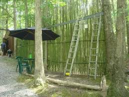 bamboo privacy fence roll inspirations fancy image home design ideas toronto