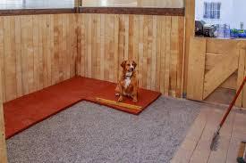 Das landgericht koblenz meint, der mieter dürfe den hund nur in räume lassen, in denen kein parkett liegt, oder das dagegen meint das amtsgericht köpenick: Bodenmatten Fur Hunde Sport Haltung Warco