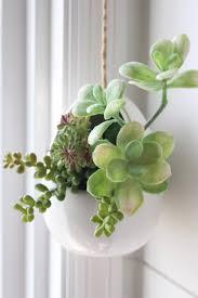 how to make- mini- succulent- arrangements- home decor- gardens- planters