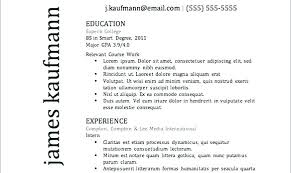 Top Resume Templates Unique The Best Resume Ever Great Resume Examples Cool The Best Resume Ever