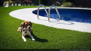 artificial grass for pets. Artificial-grass-safe-for-pets-002 Artificial Grass For Pets I