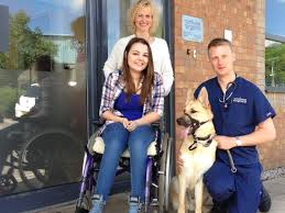 Teenager's support dog to have vital hip operation in Runcorn courtesy of  vets group - Liverpool Echo