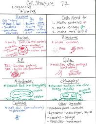 Cell Structure Chart Pap Cell Theory Structure And Transport Flashes Biology
