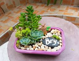 dish gardens. Adding A Small Painted Stone Makes Dish Garden More Personalized. Gardens N