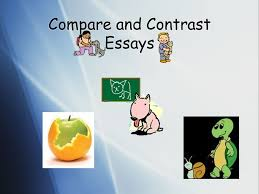 compare and contrast essays ppt video online  1 compare and contrast essays