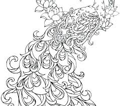 Cute Peacock Colouring Pages Realistic Peacock Coloring Page Free