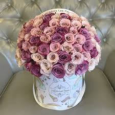 jlf hope 75 roses