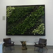 informal green wall indoors. Bringing Nature Into An Interior Living Space Informal Green Wall Indoors HGTV.com