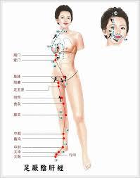 「肝經 循行」的圖片搜尋結果