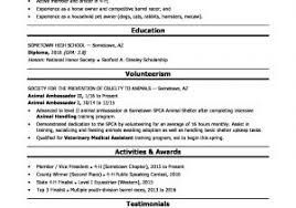 American Resume Format For Freshers Free Sample Accountant Resume
