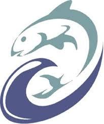 Marine Biologist Research Paper