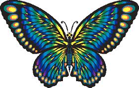 """Vaizdo rezultatas pagal užklausą """"butterfly animation"""""""