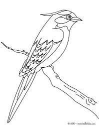 Small Picture Flying bird coloring pages Hellokidscom