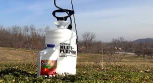 3 Natural Pesticides For Fruit Trees  Your Best DIY Projects Homemade Spray For Fruit Trees