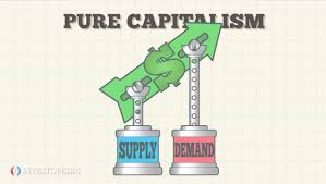 socialist economies how and work mixed economic system