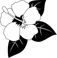 夏の花1 15 ハイビスカス 花の無料イラスト素材 イラストポップ