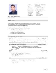 Cv Format Free Job Cv Example