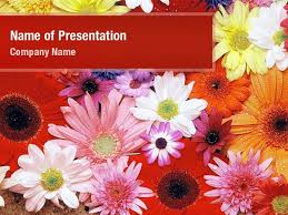Ppt Flowers Flowers Powerpoint Templates Flowers Powerpoint Backgrounds