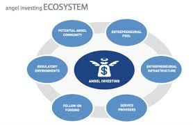 Image result for angel investors