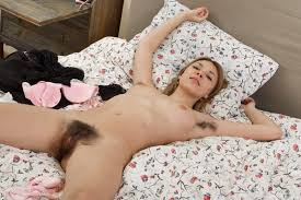 Hairy Maid with Hairy Pussy Wearing Stockings in Bed Image.