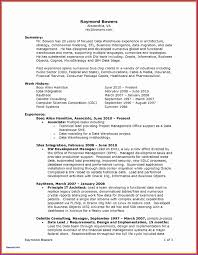 Technical Lead Resume Format Resume Format Example