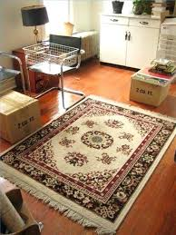 how to clean an area rug a large outside dog urine out of wool at home