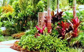 Small Picture Delighful Garden Design Malaysia Japanese In We Offers Front Yard