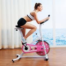 sunny health fitness p8100 pink indoor cycling bike sunny pink indoor cycling bike
