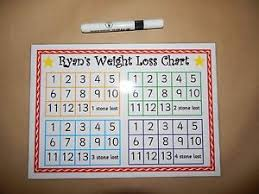 Details About Weight Loss Record A4 Homemade Laminated Card Slimming World Weight Watchers