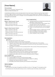 Professional Accountant Resume Senior Accountant Resume Template For Word Word Excel