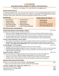 Resume Example Inspiration Business Development Manager Director Resume Example