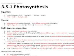 aqa a level biology unit 5 1 photosynthesis revision notes by alevelbioboss teaching resources tes