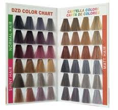 China Color Swatch Book With Shining Synthetic Hair China