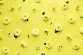 25 aesthetic yellow laptop backgrounds
