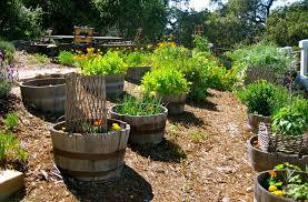 barrel garden. 2382870141726f88eafd2c96c4c43f99 Barrel Garden L