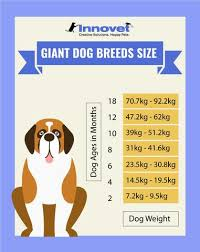 Leonberger Puppy Growth Chart Puppy Growth Chart By Month Breed Size With Faq All You