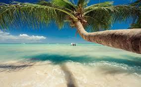 tropical landscape desktop backgrounds. Nature Landscape Caribbean Sea Palm Trees Beach Tropical Summer For Desktop Backgrounds