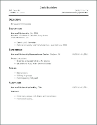 Good Example Resume Extraordinary Resume Examples College Students Internships Name Good Titles For