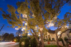 the chandelier tree shutterstock com