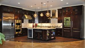 stainless steel pendant lamp kitchen design pictures dark cabinets black and gray stainless steel french refrigerator