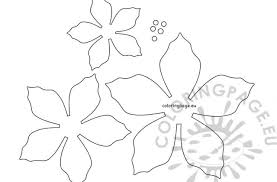 Download printable unique poinsettia coloring page. Topic For Printable Food Coloring Page Poinsettia Christmas Flower Template Coloring Page Printable Food Simple Pumpkin With Leaf Drawing Monsters Vs Aliens Pages Food Cloudclour
