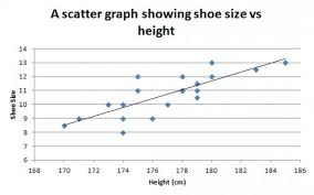 Shoe Size Compared To Height Chart Conclusive Shoe Size To Height Calculator Sneaker Width Size