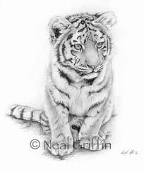 baby tiger drawing tattoo. Unique Baby For Baby Tiger Drawing Tattoo G