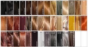 Color Chart Lugos