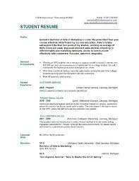 Example Student Resume Custom Sample College Student R College Student Resume Example As Resume