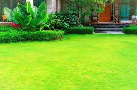 The Comprehensive Guide To Kansas City Lawn Care Heritage