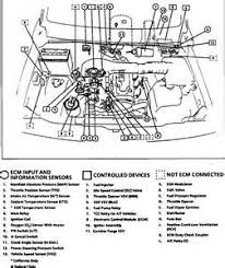 1996 geo prizm wiring diagram 1996 image wiring similiar geo prizm engine diagram keywords