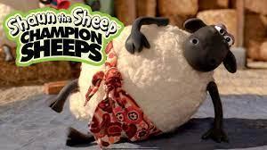 Nhu đạo | Championsheeps | Những Chú Cừu Thông Minh [Shaun the Sheep] -  YouTube