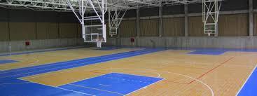 Basketball  Tennis Court  Dream It    Fantasy Dream Home Backyard Tennis Court Cost